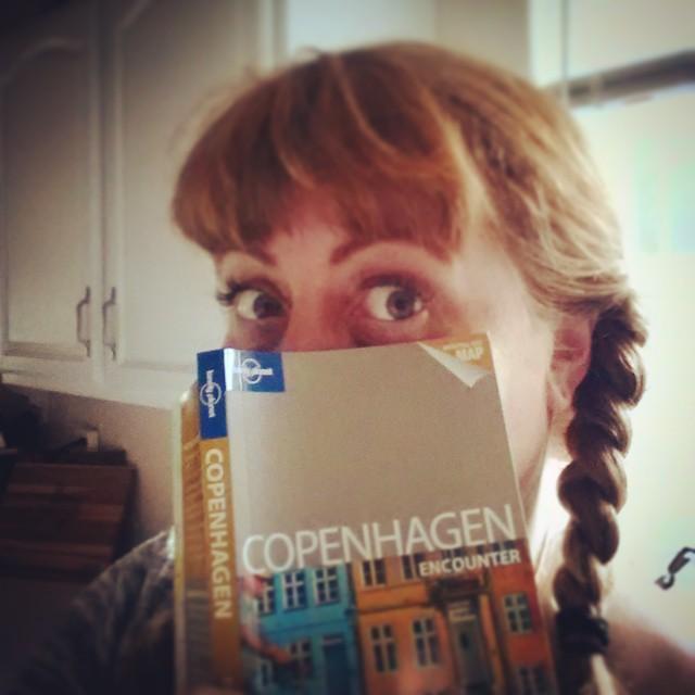 CopenhagenTravelGuidePic