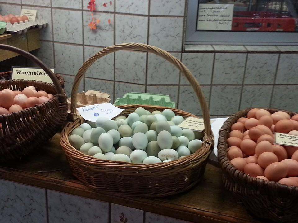 EggsGermany