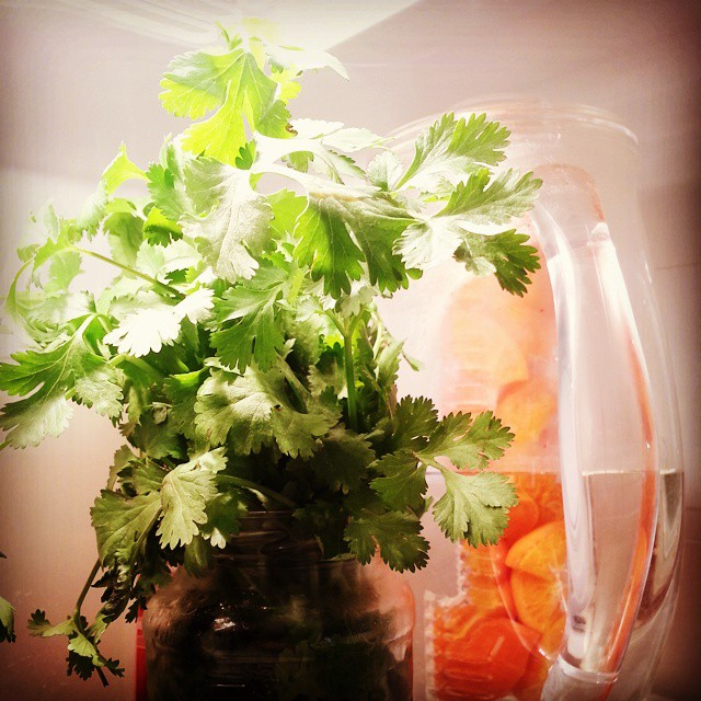 InfusedWaterPitcher